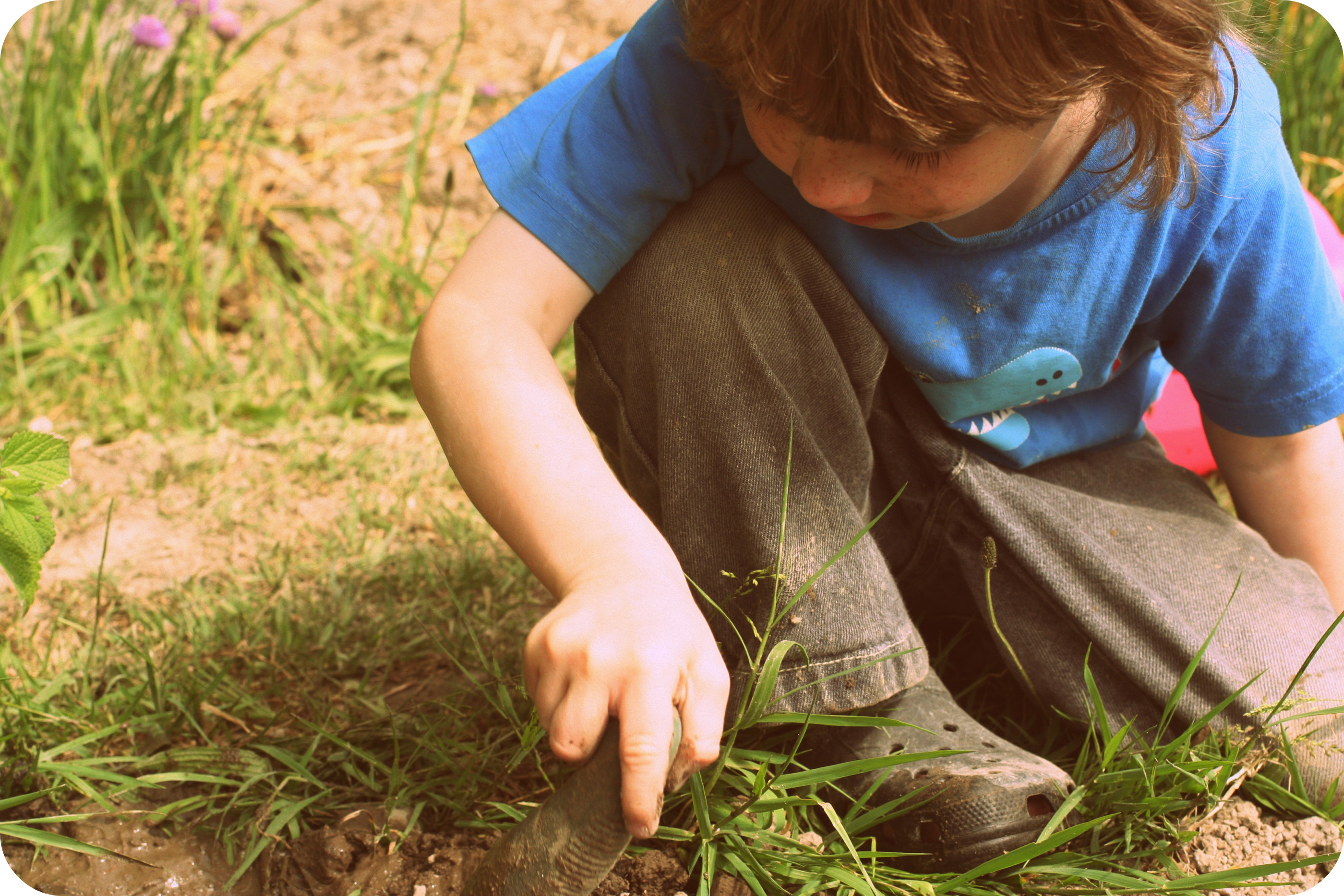 Carrots and Kids: Gardening is good for children!