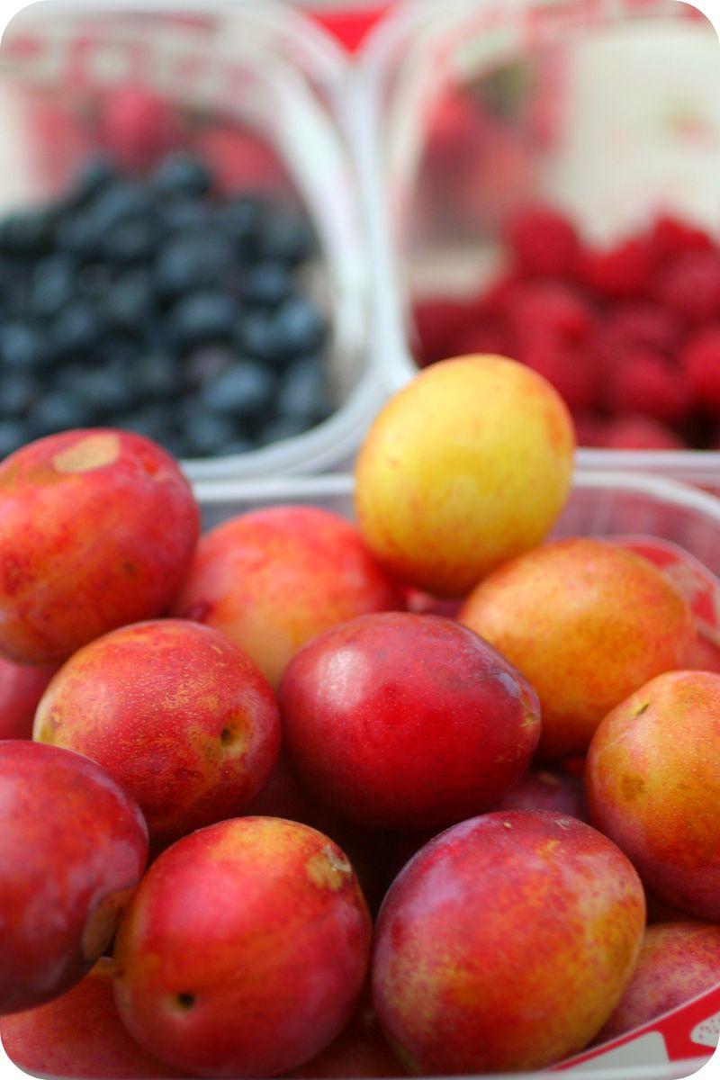 Summerfruit.jpeg